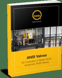 ANSI Valves