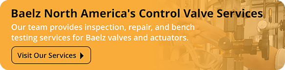 Baelz-Control-Valve-Services